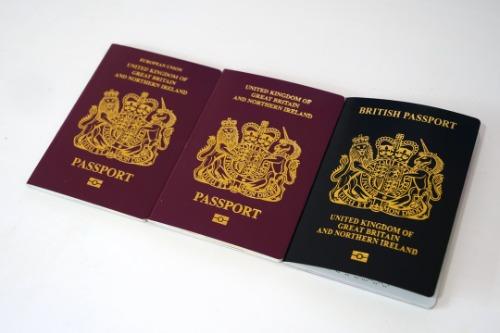 BN(O) Visa詳情